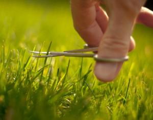 Подстрижка газона